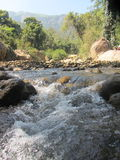 River rapid Royalty Free Stock Images