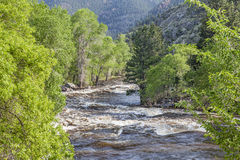 River rapid in springtime Stock Images