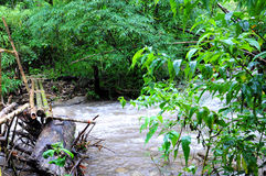 River rapidly Stock Photos