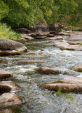 River rapids. With stone in water Stock Photography