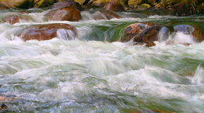 River Rapids Stock Photography