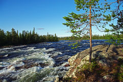 River Rapids. Stock Image