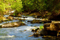 River rapids. Water rushing among rocks in river rapids in Ontario Canada Royalty Free Stock Photography