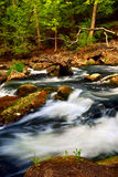 River rapids Stock Image