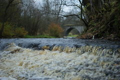 River rapids Royalty Free Stock Images