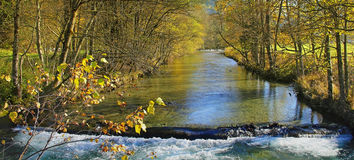 River with rapids, golden autumnal landscape Stock Images