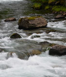 River rapids. Moss covered boulders in river rapids Royalty Free Stock Images