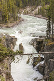 River Rapids in Mountain Valley Royalty Free Stock Photography