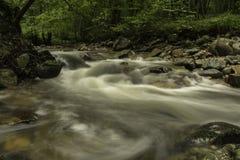 River rapids Stock Photos