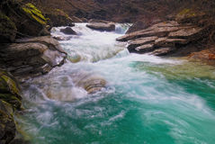 River rapids. In the park Royalty Free Stock Image