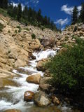 River rapids in valley. This is The Alluvial Fan in Rocky Mountain National Park, Colorado.  Rushing white water going down rocks with alpine trees and a blue Stock Photography
