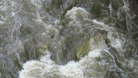 River Rapids stock video footage