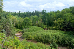 River Ravine in Jay Cooke State Park Royalty Free Stock Image