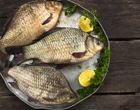 River raw fish - carp, in a round plate Royalty Free Stock Photos