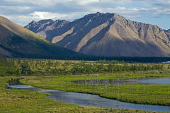 River reach in a broad mountain valley. Royalty Free Stock Images