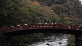 River and red bridge in autumn tree at park.  stock video footage