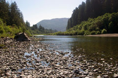 River Redwood NP. River at Redwood National Park, California Stock Images