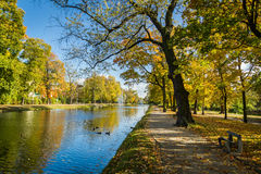 River reflection in autumn park Royalty Free Stock Photos