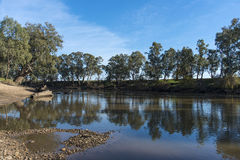 River reflections. Murrumbidgee River at Wagga Wagga NSW Australia, the slow moving river gives lovely reflections. Copyspace royalty free stock image