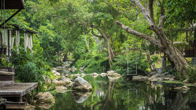Jungle and River quiet and natural resort Royalty Free Stock Photo
