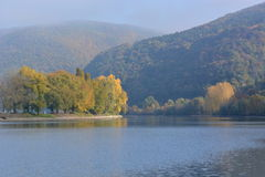 River rhine with golden leaves Stock Photos