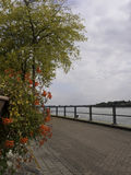 The river rhine Stock Photography