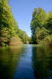 River Ride. A silent Ride on the River into the rain forest Royalty Free Stock Photography