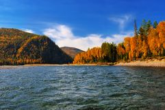River riffle autumn day Royalty Free Stock Image