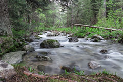 River in the Rila mountains, Bulgaria Royalty Free Stock Images