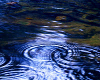 River Ripples. Ripples of raindrops on a forest stream Royalty Free Stock Photo
