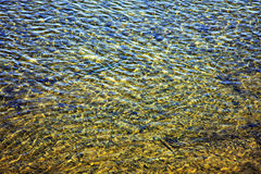 River ripples Stock Photos