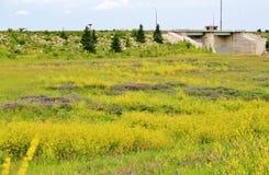 River river drive , Winnipeg Stock Images