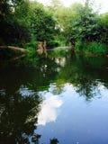 River Eden Royalty Free Stock Image