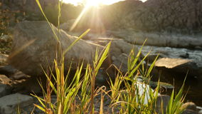 River rock sunset water stock video footage