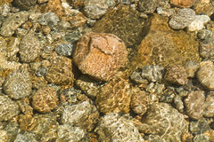 River rocks. Rocks on the floor of a river Royalty Free Stock Photo