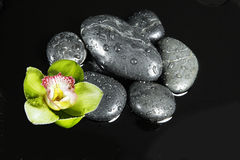 River rocks. On black background in a circle and horchid royalty free stock photos