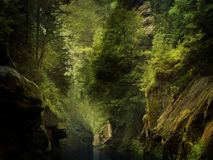 River through the rocks. The river through the rocks in wild forest (Czech Switzerland stock photos
