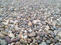 River rocks Stock Image