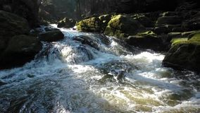 River with rocks covered with moss stock footage