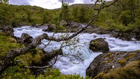 A river among rocks and forests. A full-flowing river flows along a stony bottom among rocks and forests Stock Image