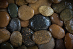 River Rocks. Many rocks at the river for background Stock Photos