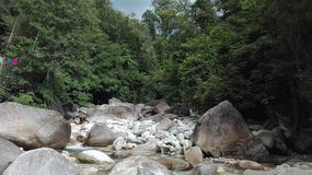 River and rocks in the middle of the forest royalty free stock photo