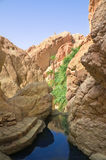 River between rocks in the oasis of Tozeur Stock Images