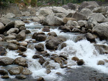 River rocks in rapid force. Rocks in the force of white water rapids in the river royalty free stock image