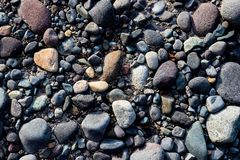 River rocks on a silty muddy bank royalty free stock photo