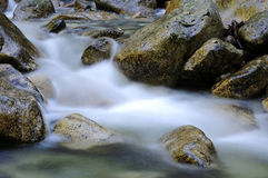 River rocks sitting in slow moving water. Bc, canada Royalty Free Stock Images