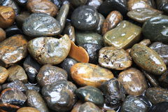 River Rocks or Spa Rocks Royalty Free Stock Image