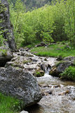 River, rocks and spring in Cerna Mountains, Romania Stock Image