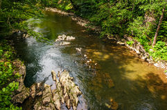 River with rocky shore. view from above Royalty Free Stock Photos