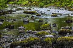 River Rothay in Ambleside. A view of the beautiful River Rothay in Ambleside, Lake District Stock Photography